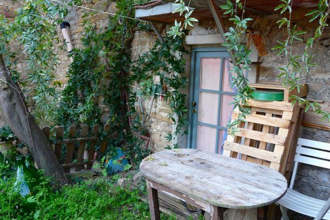 Little Garden / Access To The Cellar