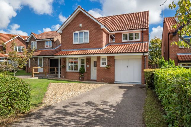 Thumbnail Detached house for sale in Oxcroft, Acle, Norwich