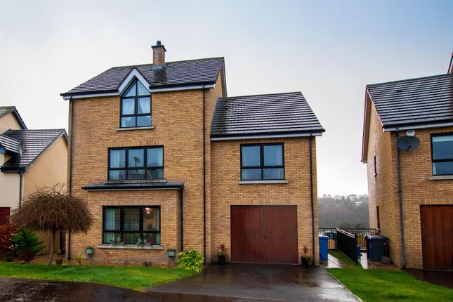 Thumbnail Property for sale in Butlers Wharf, Strathfoyle, Londonderry