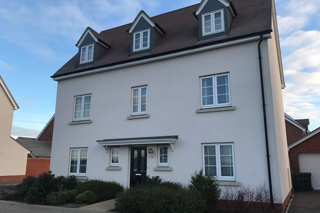 Thumbnail Detached house for sale in Emberson Croft, Chelmsford, Essex