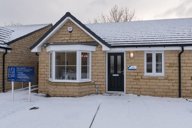 Thumbnail Semi-detached bungalow for sale in Scholar's Park, Bourne Avenue, Darlington, County Durham
