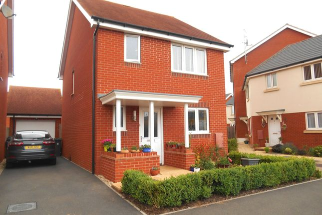 Thumbnail Detached house to rent in Mayfield Way, Cranbrook, Exeter