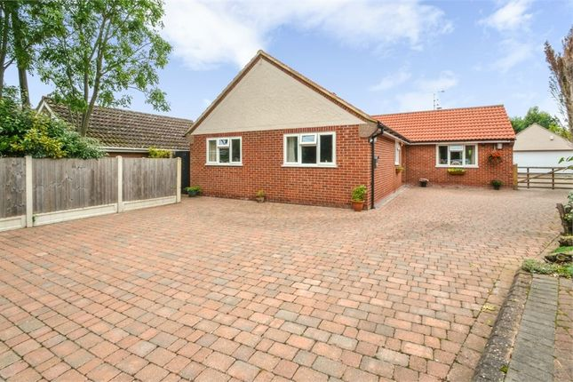 Thumbnail Detached bungalow for sale in Tudwick Road, Tiptree, Colchester, Essex