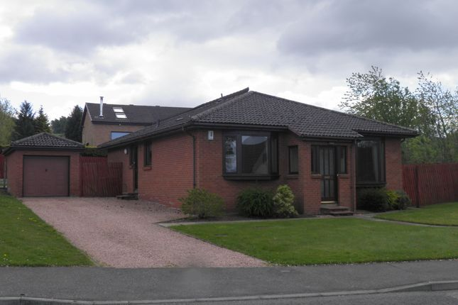 Thumbnail Bungalow to rent in Old Halkerton Road, Forfar