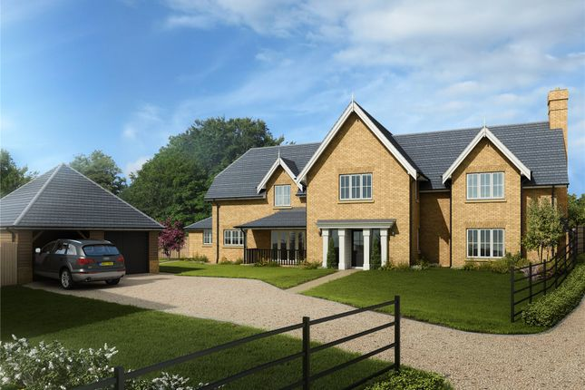 Thumbnail Detached house for sale in Chelmsford Road, Purleigh, Chelmsford, Essex