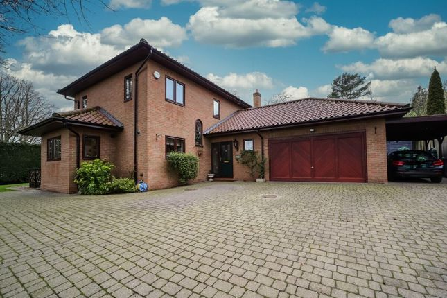 Thumbnail Detached house for sale in Meadow Lane, Thorpe St Andrew, Norwich