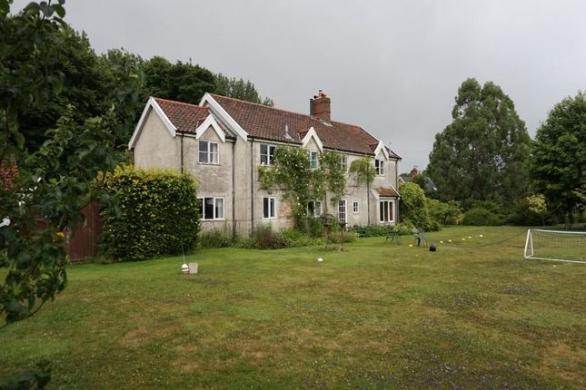 Thumbnail Detached house to rent in Station Road, Brampton, Beccles