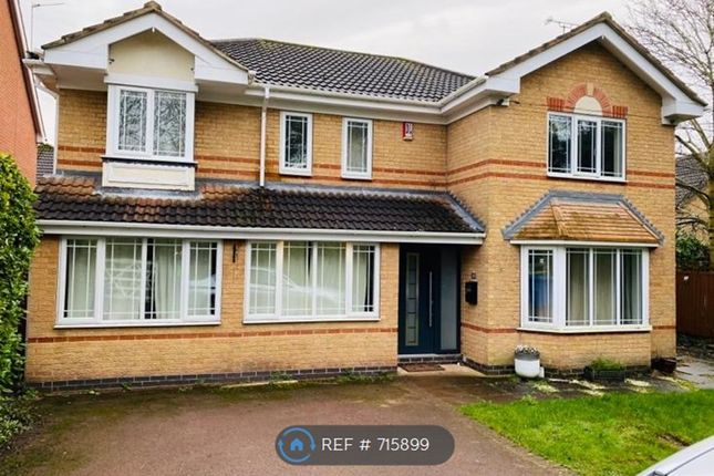 Thumbnail Detached house to rent in Callow Hill Way, Derby