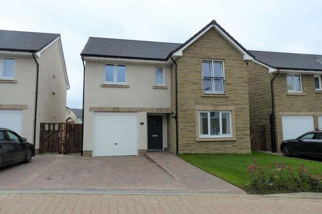 Thumbnail Detached house to rent in Daffodil Way, East Calder