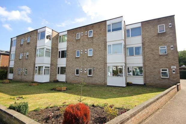 Thumbnail Flat to rent in Park Lane, Norwich