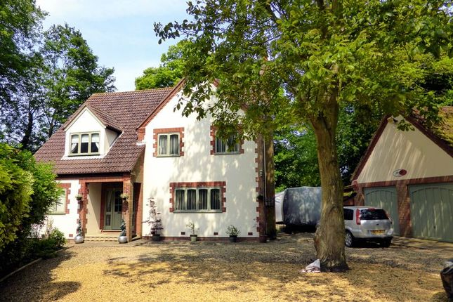 Thumbnail Country house for sale in Rectory Road, Tydd St Mary, Lincolnshire