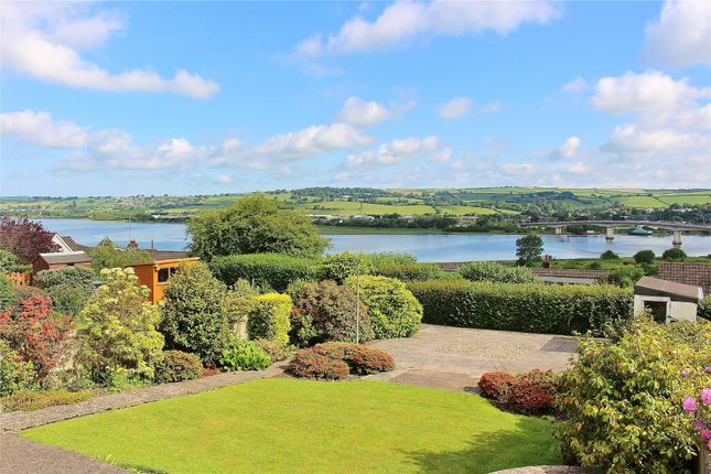 Thumbnail Bungalow for sale in Westfield Avenue, Sticklepath, Barnstaple