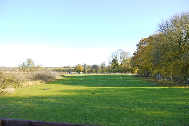 Thumbnail Land for sale in Preston St Mary, Sudbury, Suffolk