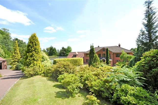 Thumbnail Detached house for sale in Avon Castle Drive, Ringwood, Hampshire