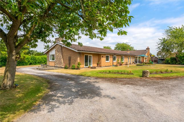 Thumbnail Detached bungalow for sale in Main Street, Coddington, Newark