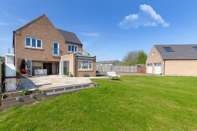 Thumbnail Detached house for sale in Manea, Cambridgeshire