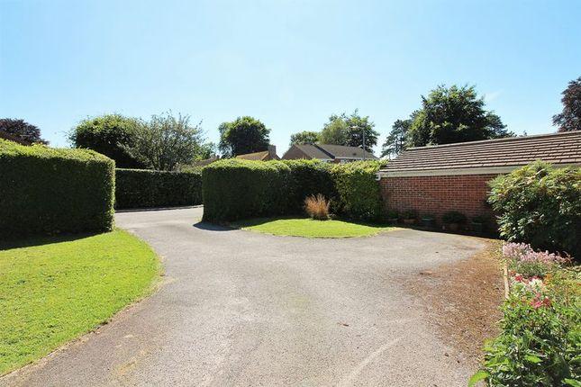 Driveway of Monmouth Court, Chard TA20