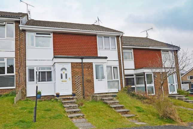 Thumbnail Terraced house to rent in Brandon Close, Alton