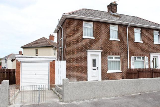 Thumbnail Semi-detached house to rent in Graymount Drive, Newtownabbey