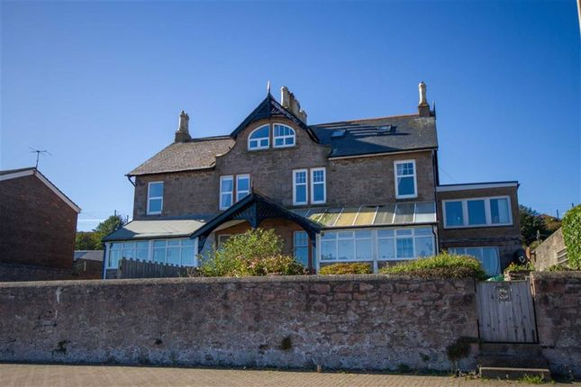 Thumbnail Semi-detached house for sale in Main Street, Spittal, Berwick Upon Tweed