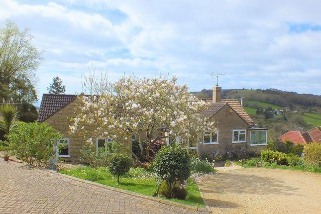 Thumbnail Detached bungalow for sale in Verriotts Lane, Morcombelake, Bridport