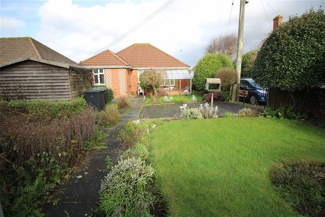 2 bed detached bungalow for sale in Rhododendron Avenue, Sticklepath, Barnstaple