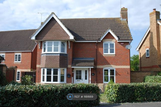 Thumbnail Detached house to rent in Dart Drive, Didcot