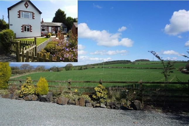 Thumbnail Detached house for sale in Trelystan, Leighton, Welshpool