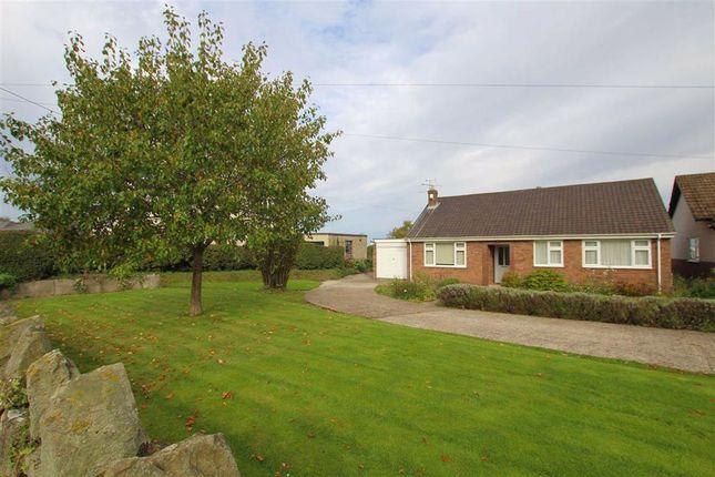 Thumbnail Detached bungalow for sale in Church Road, Northop, Flintshire
