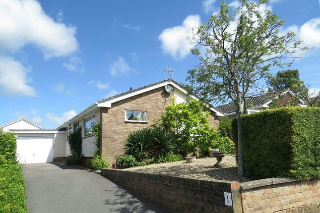 Thumbnail Detached bungalow for sale in Risedale Road, Winscombe