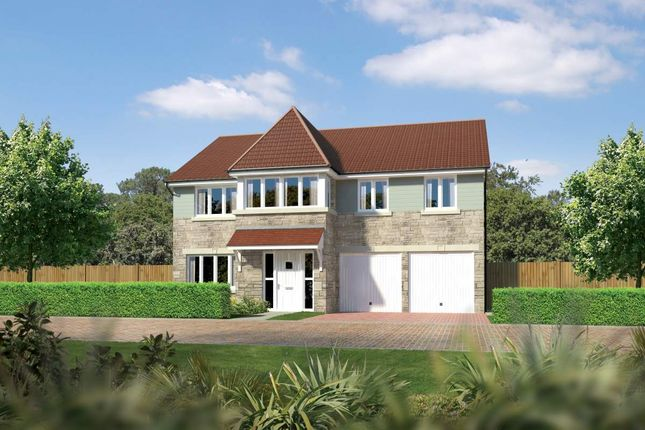 "Thumbnail Detached house for sale in ""Noblewood"" at East Calder, Livingston"