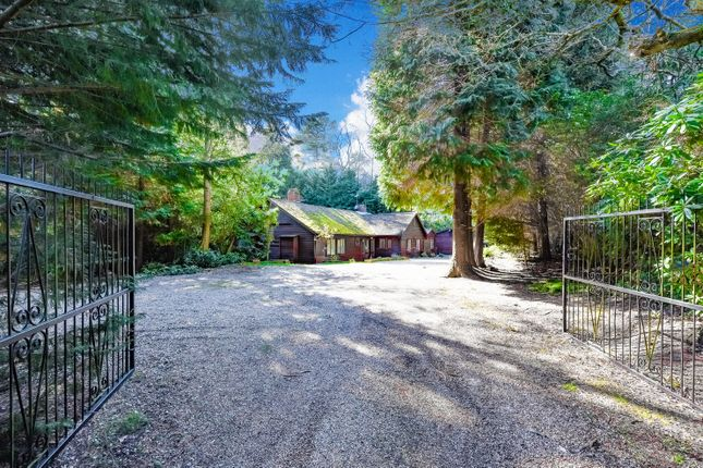 Thumbnail Detached bungalow for sale in Castle Road, Camberley