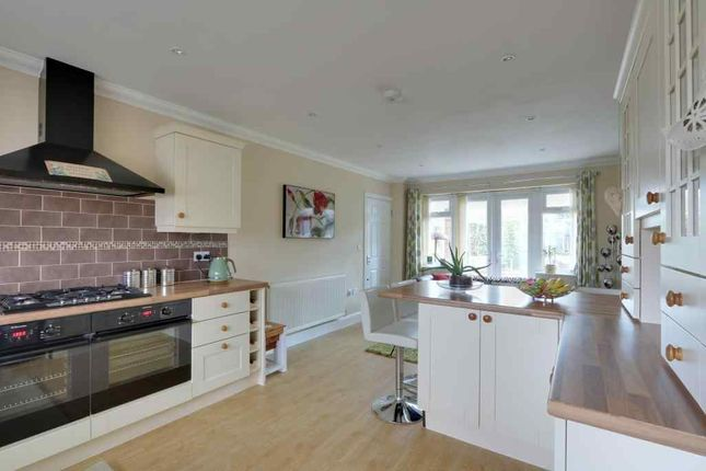Thumbnail Detached house for sale in Shirley Road, Eastwood, Leigh-On-Sea