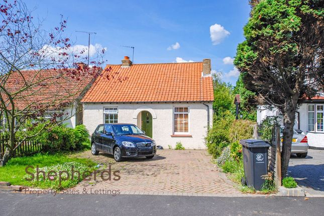 Thumbnail Detached bungalow for sale in North Street, Nazeing, Essex