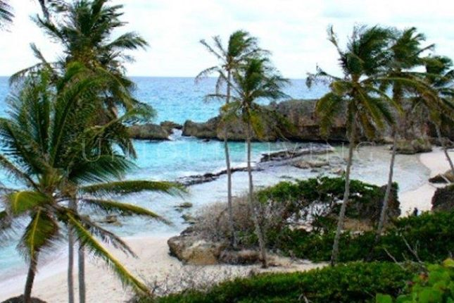 Thumbnail Land for sale in Saint Philip, Saint Philip, Barbados