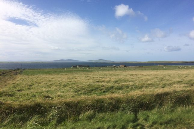 Land for sale in Land Near Shoehall, Eday, Orkney