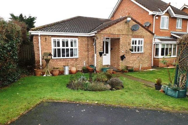 Thumbnail Bungalow to rent in Harewood Gardens, Pegswood, Morpeth