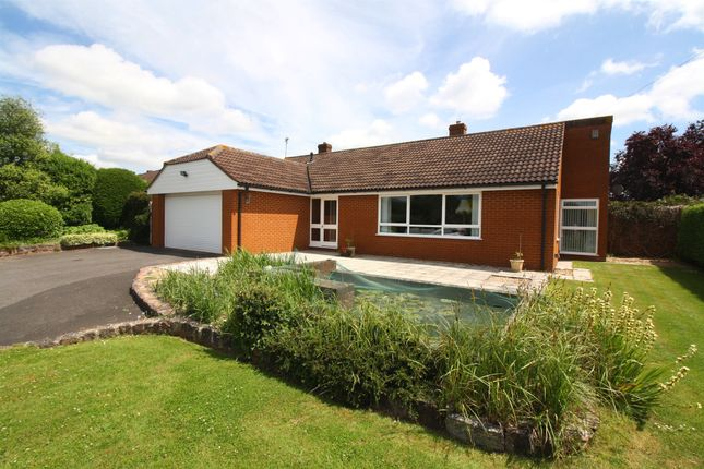 Thumbnail Detached bungalow for sale in Stoke Road, Henlade, Taunton