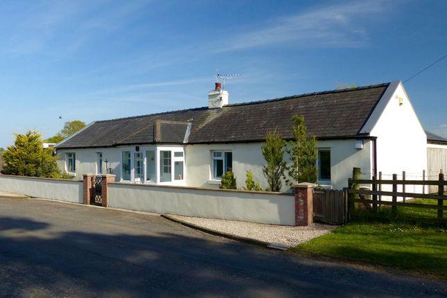 Thumbnail Detached bungalow for sale in Kirklinton, Carlisle