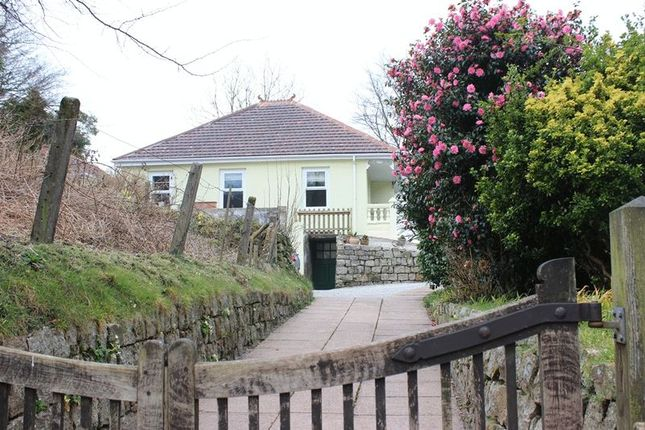 Thumbnail Bungalow for sale in Carthew, St. Austell