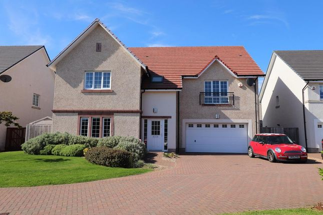 Thumbnail Detached house to rent in Friarsfield Road, Aberdeen