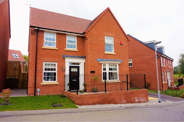 Thumbnail Detached house for sale in Foxglove Way, Beverley