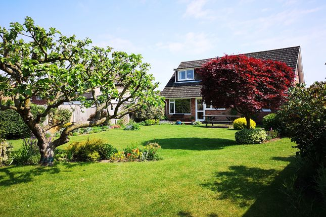 Thumbnail Bungalow for sale in Taylor Avenue, Cringleford, Norwich