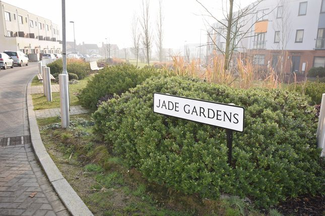 Thumbnail Room to rent in Jade Gardens, Colchester