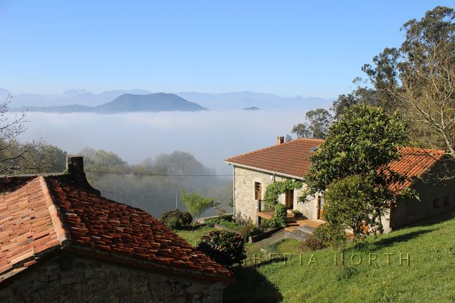Misty Morning Above Main House And Chapel
