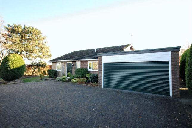 Thumbnail Detached bungalow for sale in Nedderton Village, Bedlington