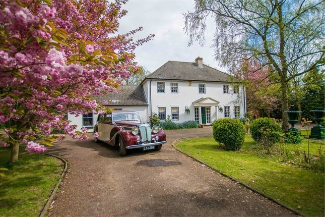 Thumbnail Detached house for sale in Packards Lane, Wormingford, Essex