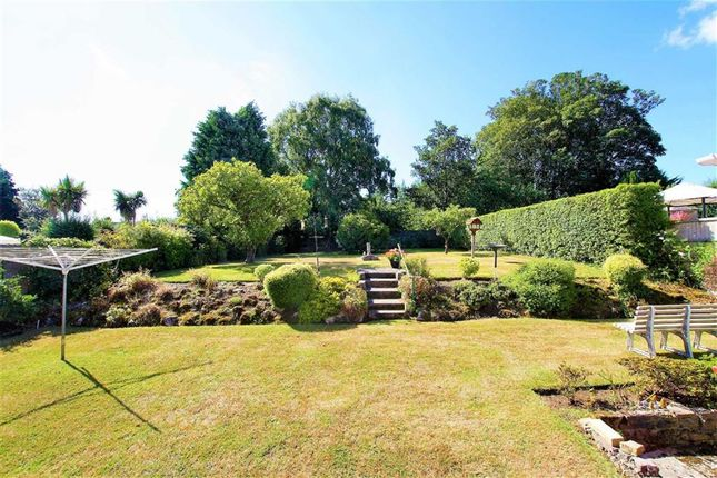 Thumbnail Bungalow for sale in Thorndon Park Drive, Leigh-On-Sea, Essex