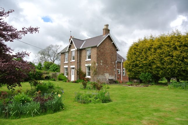 Thumbnail Detached house to rent in Thirlby, Thirsk