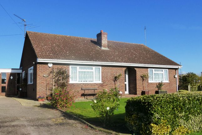 Thumbnail Bungalow to rent in Hasse Road, Soham, Ely